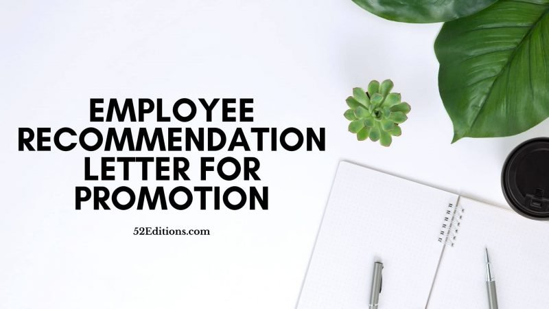 Employee Recommendation Letter For Promotion